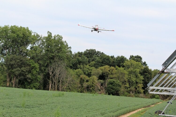 More farmers are using cover crops to keep pollutants out of lakes and streams