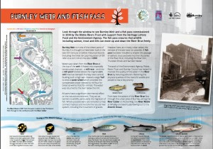 Fish Pass heritage information panel