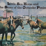 Little Sea Horse and the Story of the Ocracoke Ponies shares information about the ponies in the context of a charming story about an island girl, her pony, and her mysterious dream surrounding the ponies' origins.