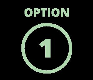 Financing Option 1