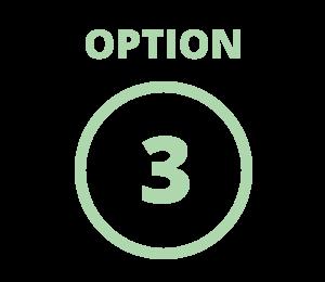 Financing Option 3