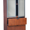 Timeless Glass doors for Stack-on Storage Cabinet-1