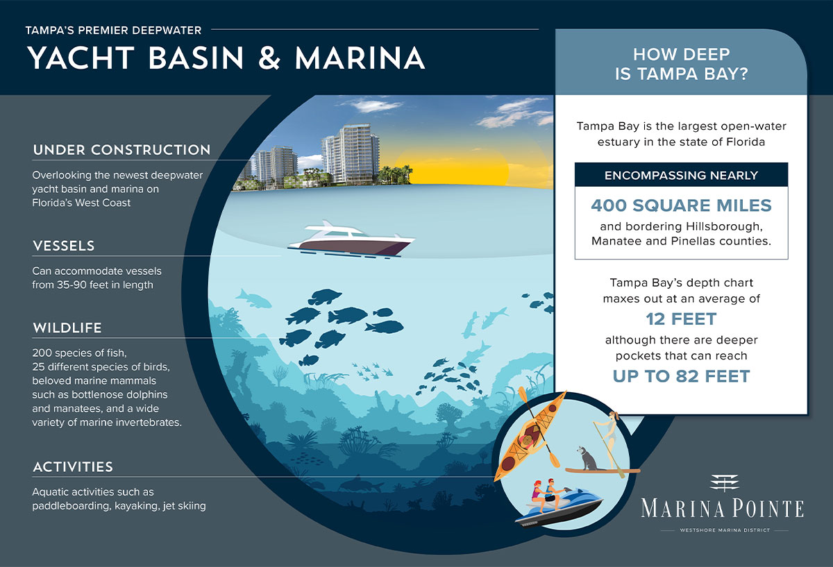 Yacht Basin and Marina – Marina Infographic