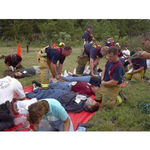 Medical Emergency Triage (MET-TAG)