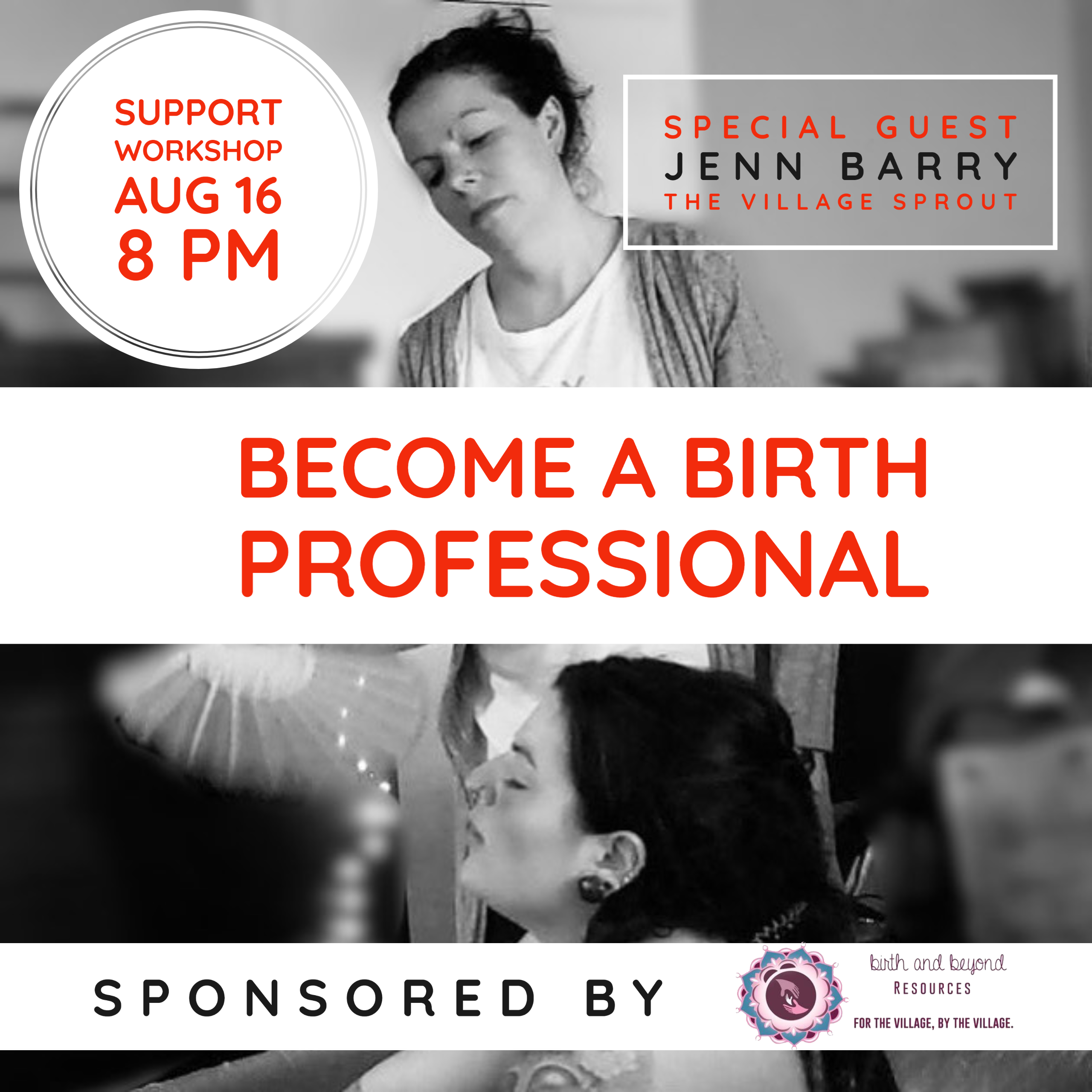 how to become a birth professional