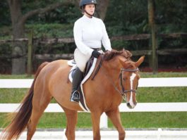 PHA-Dressage-Dec2018-PC099102