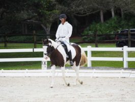PHA-Dressage-Dec2018-PC099144