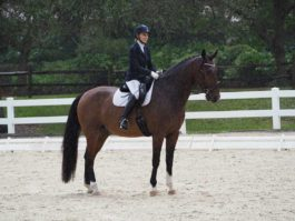 PHA-Dressage-Dec2018-PC099270