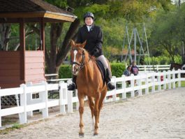 PHA-dressage-march2019-P3102326
