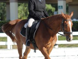 PHA-dressage-april2019-IMG_1067