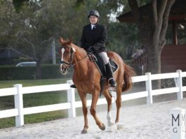 PHA-dressage-april2019-IMG_1226