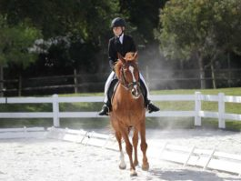 PHA-dressage-april2019-IMG_1684