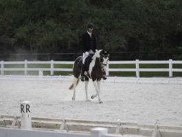 PHA-dressage-april2019-IMG_1702