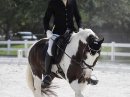 PHA-dressage-april2019-IMG_1742