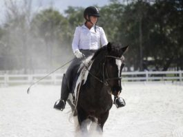 PHA-dressage-april2019-IMG_1768