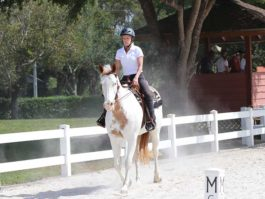 PHA-dressage-april2019-IMG_1873