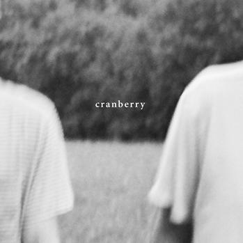 Top Albums Cranberry