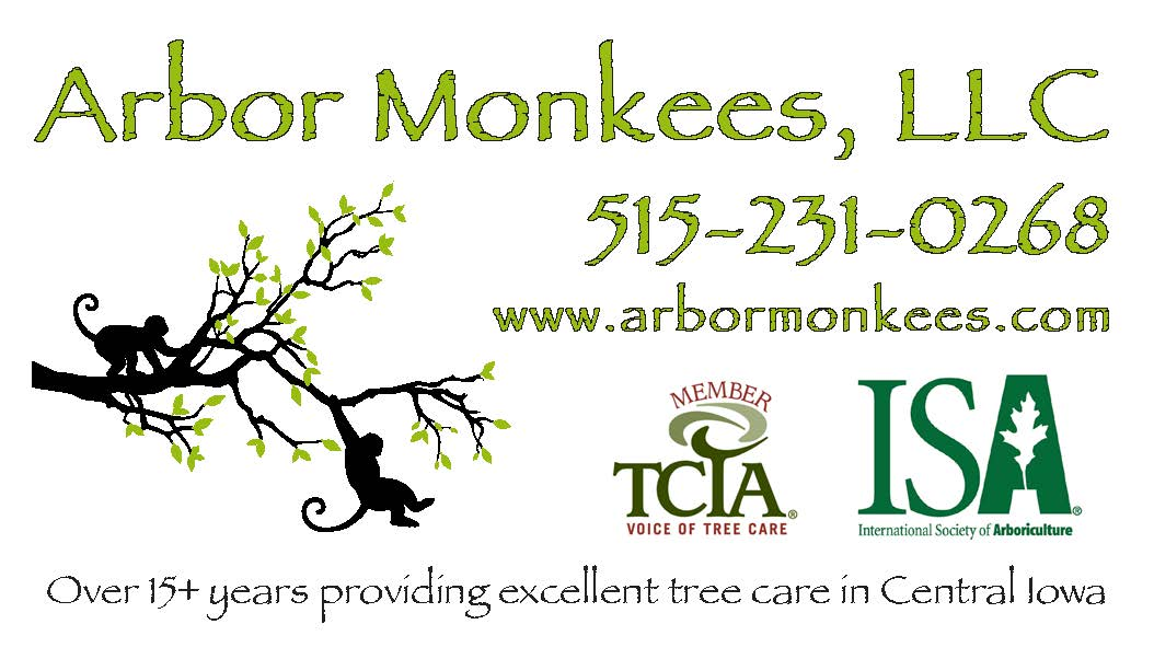 Arbor Monkees