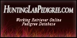 huntinglabpedigree_banner
