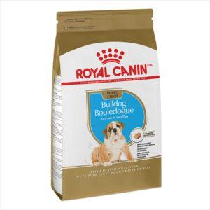royal-canin-bulldog-cachorro