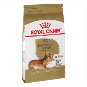 royal-canin-dachshund