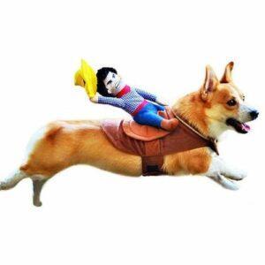 disfraz-para-perro-de-vaquero