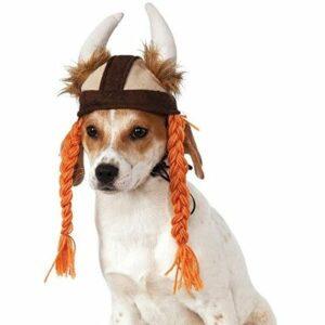 disfraz-vikingo-para-perro