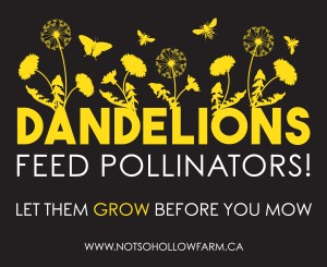 "Native plant nursery Not So Hollow Farm is helping ""feed the bees"" with these bright lawn signs."