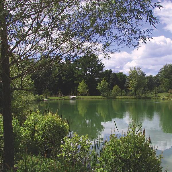 Lenox – 2 acre trout pond
