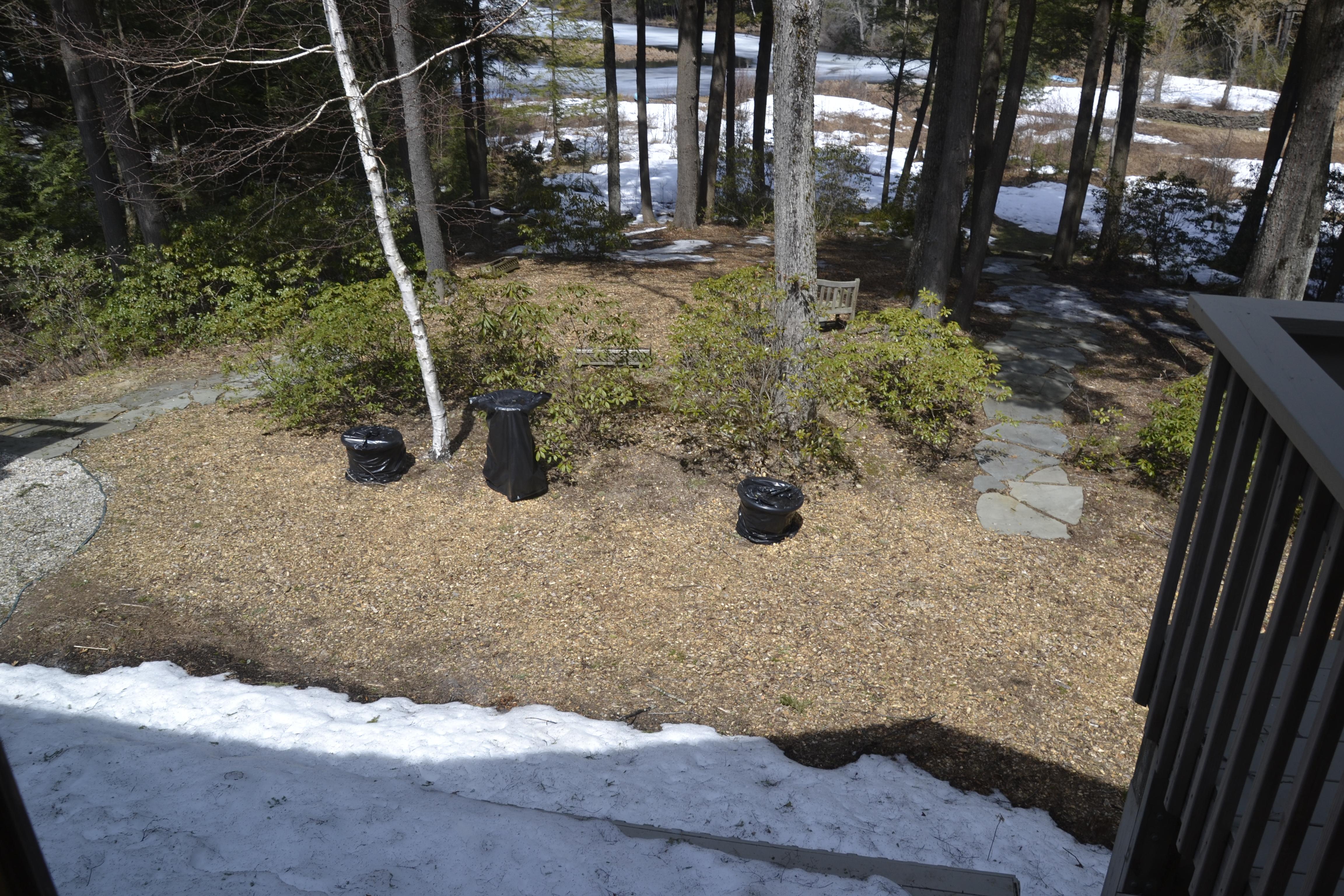 Ruth's Garden before 1