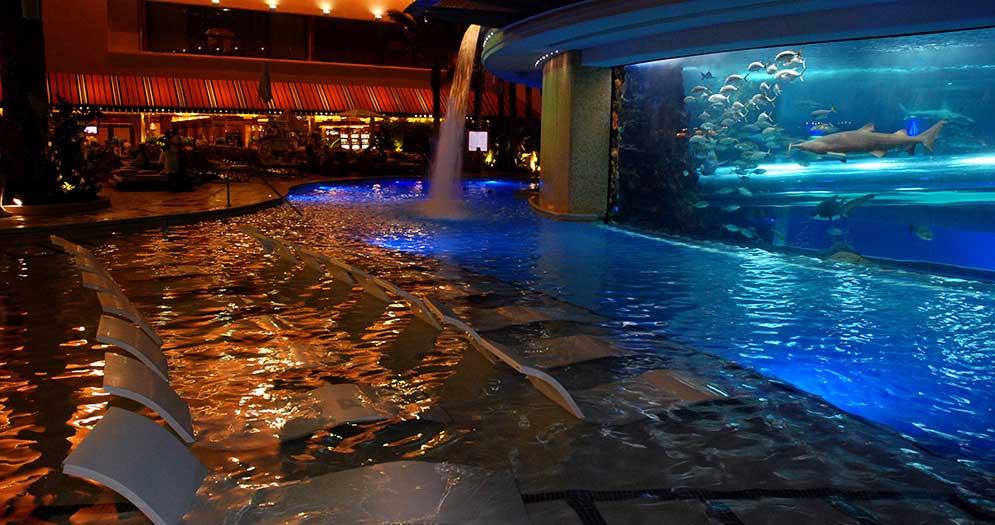 Tank at the Golden Nugget Casino Hotel, Las Vegas