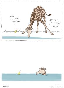 Liz-Climo-Giraffe-Drinking
