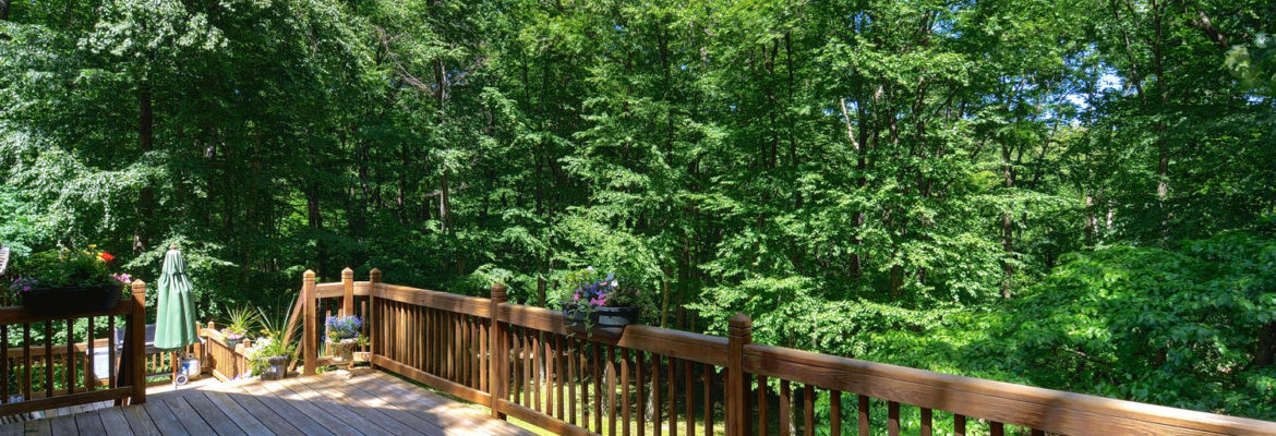 Deck - Outside View