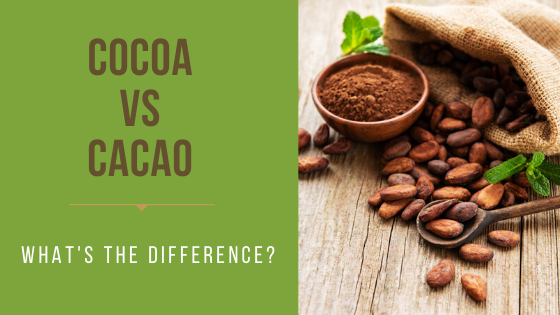 Cacao vs Cocoa: What is the Difference?