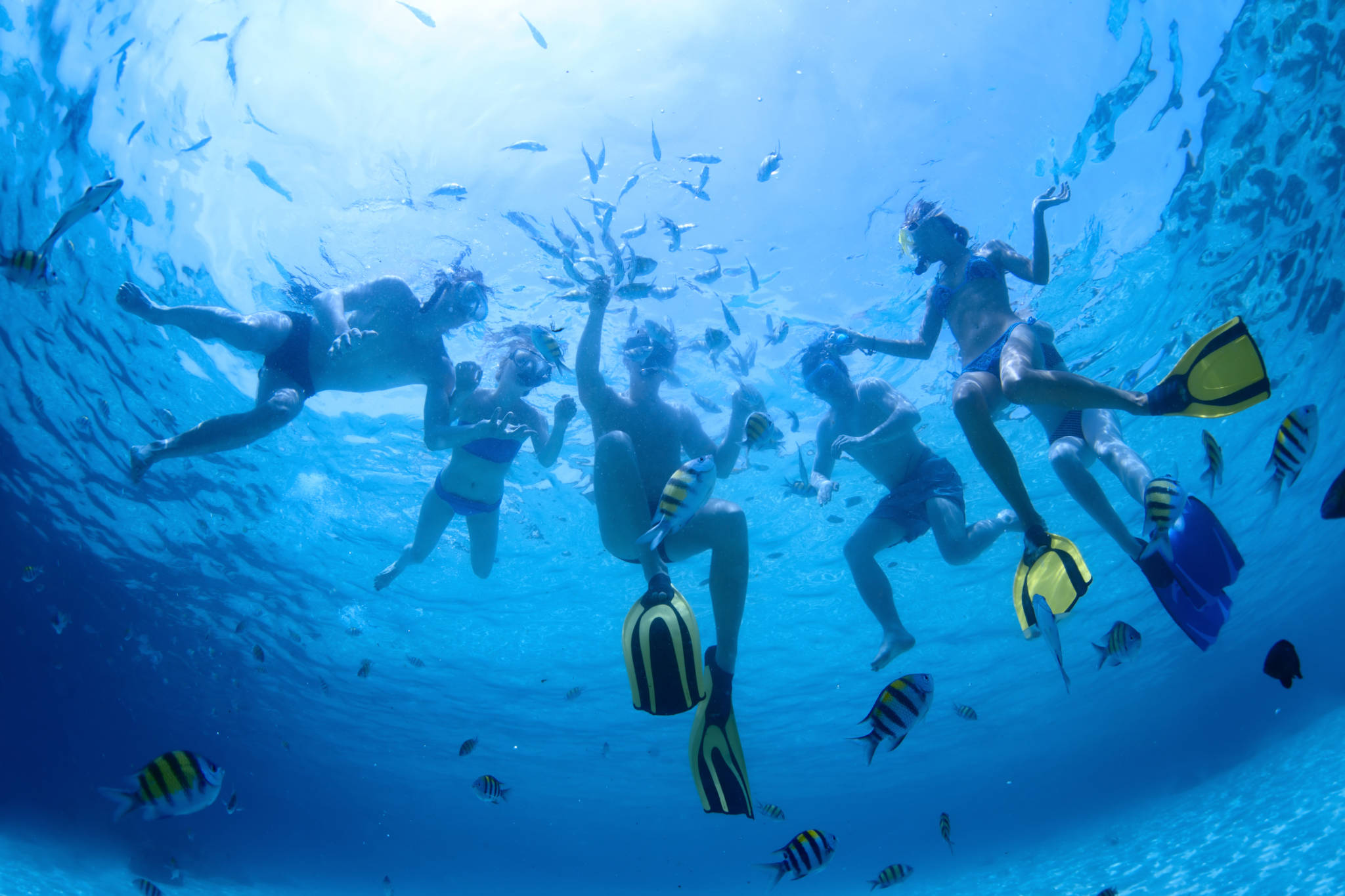 Bimini Bahamas_Water Time Charter
