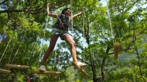 Madeira tree top adventure park