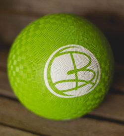 B Present Exercise Ball
