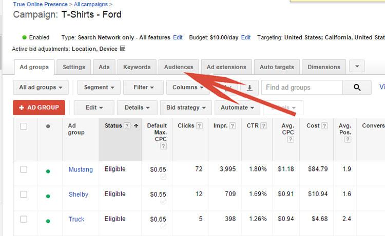 Google AdWords - Audiences Tab