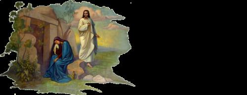 Immanuel Lutheran Church Logo