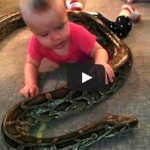 WTF 14-month Baby Plays With Pet Python..Whats Your Opinion?
