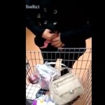 WTF: Female Gets Caught Shoplifting & Unloads Dozens Of Items From Her Pants!