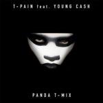 T-Pain Ft. Young Cash Panda TMIX