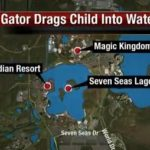 """There's """"no question"""" 2-yr-old dragged by an alligator at Disney's Resort is dead."""