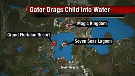 Police still Searching For A 2-Year Girl Who Got Snatched By An Alligator At Disney Resort In Florida.