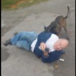Savage: Man Sicks Dog On Old Head For Trespassing On His Property!