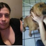 Woman Arrested For Having Sex With A Dog On Social Media.