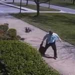 Police Officer fights off wild Goose (Video).