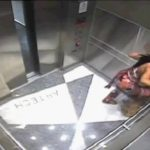 South Florida Woman Caught On Camera Kicking Dog Inside Elevator.