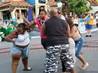 They Wild'n: Brawl Breaks out between a family at Disneyland.