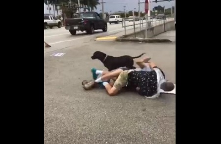 Brawl Breaks Out Between Two Men Over Political Sign Waving.